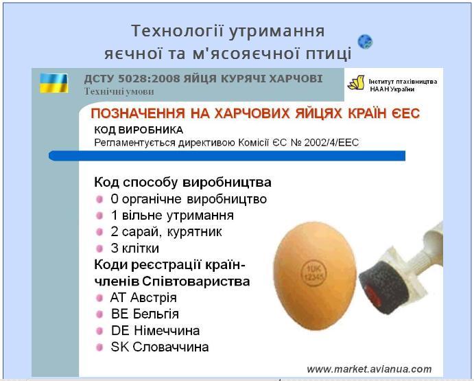 Маркування харчових яєць в країнах ЄС