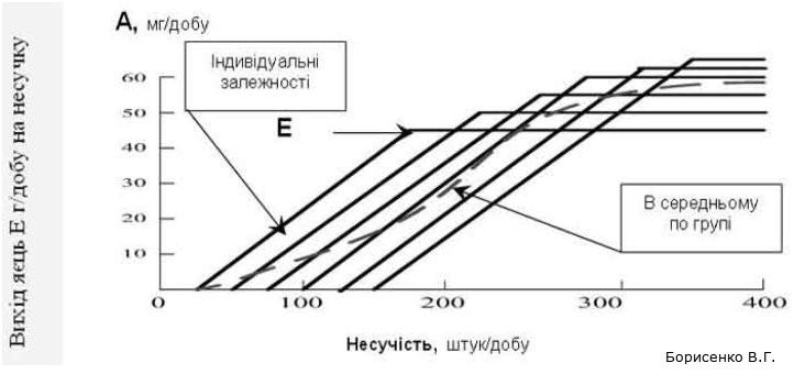 Модель реакції несучок на споживання амінокислоти, Борисенко В.Г.